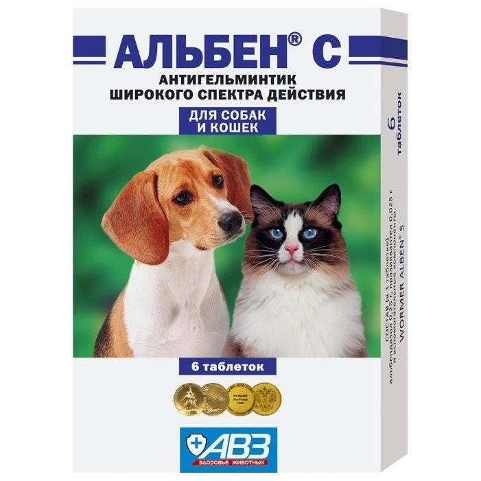 Инструкция по применению таблеток «альбен с» для избавления кошек и собак от глистов