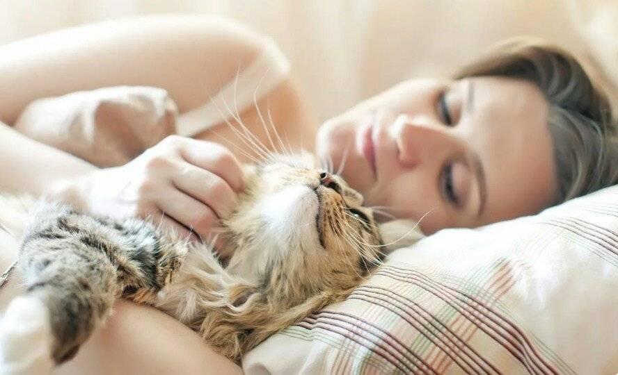 Кот дрожит во сне как будто мёрзнет и ему холодно