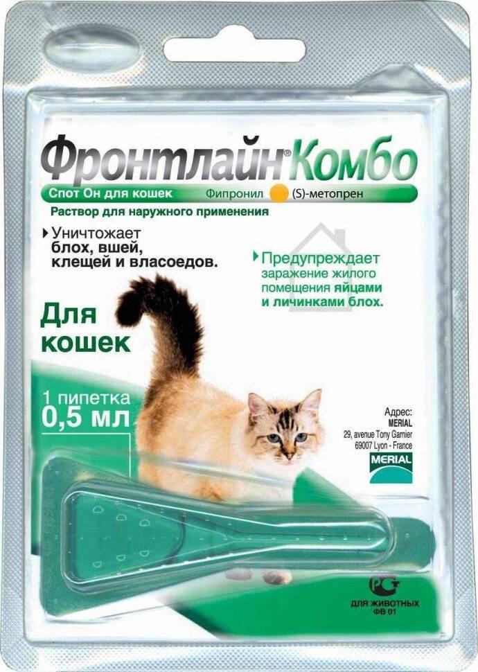 Фронтлайн от клещей для собак (спрей, капли, таблетки, комбо): отзывы, как действует, инструкция по применению