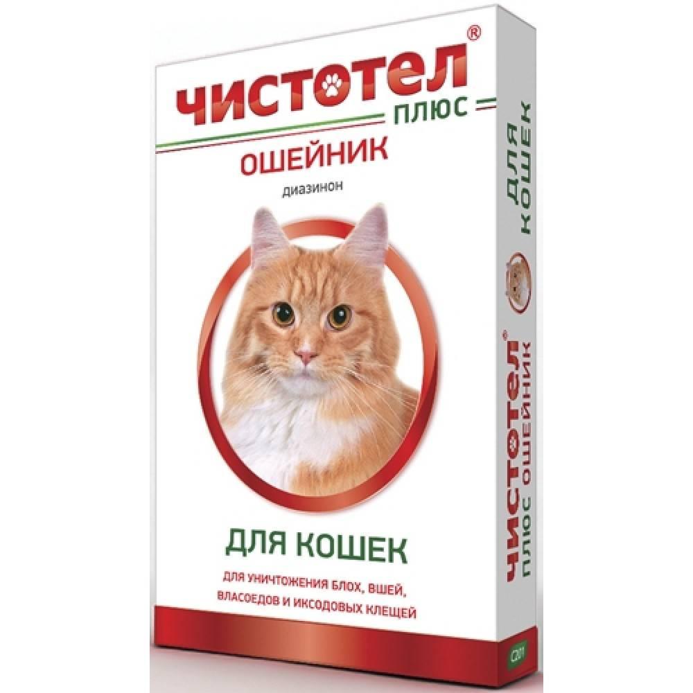 Спрей от блох для кошек: особенности использования, обзор препаратов и отзывы