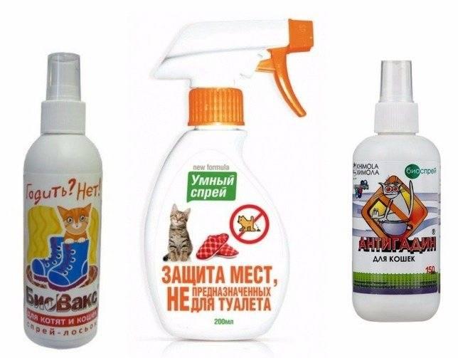 Сделать антигадин для кошек своими руками — выявляем суть