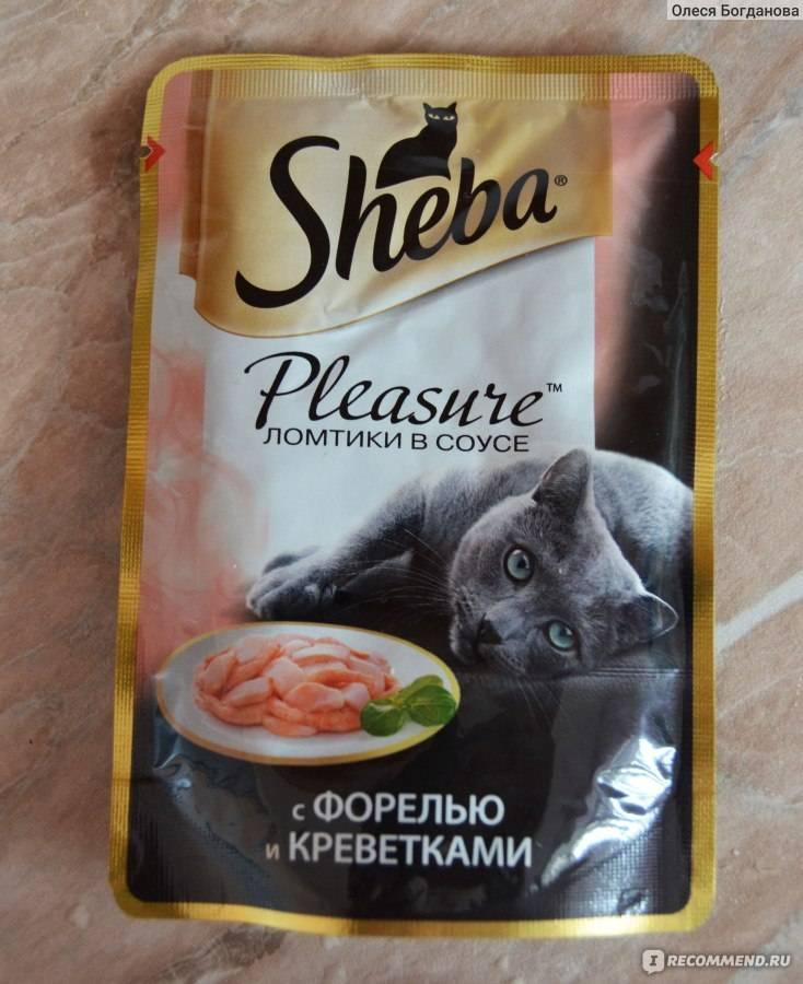 Корм для кошек sheba: отзывы, разбор состава, цена