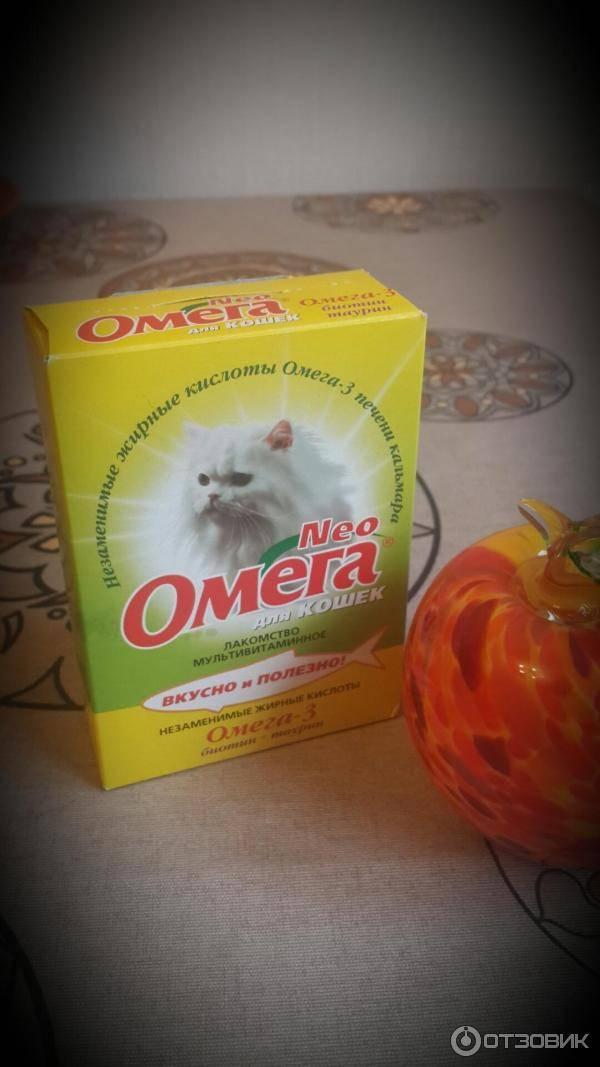 Можно ли давать кошкам рыбий жир? как давать рыбий жир коту, дозировка. польза омега-3 жирных кислот для кота