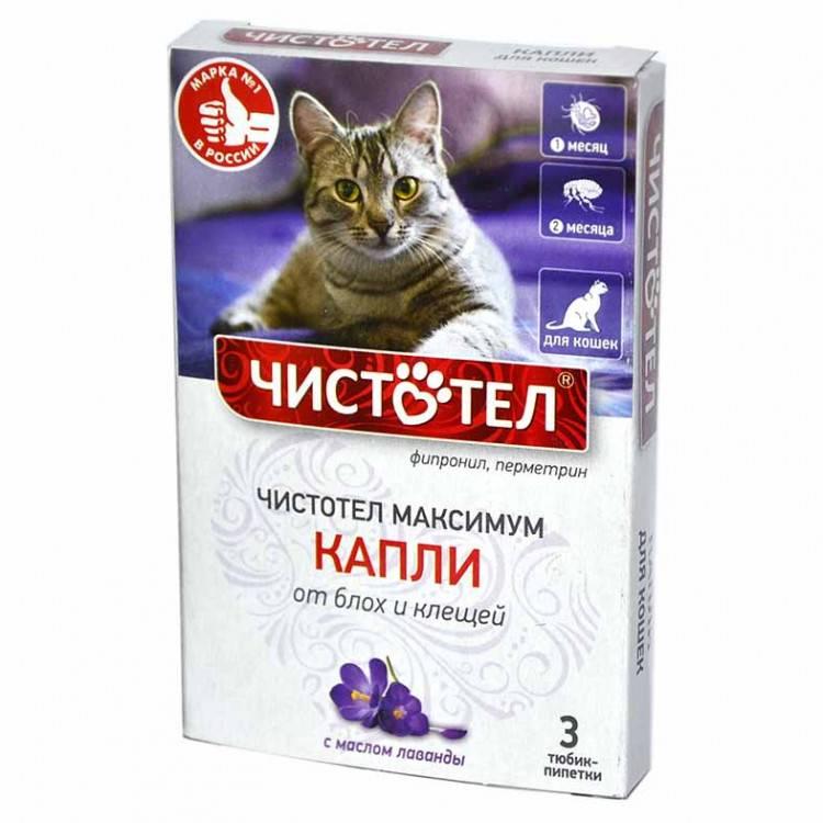 Капли чистотел для кошек: инструкция и показания к применению, отзывы, цена