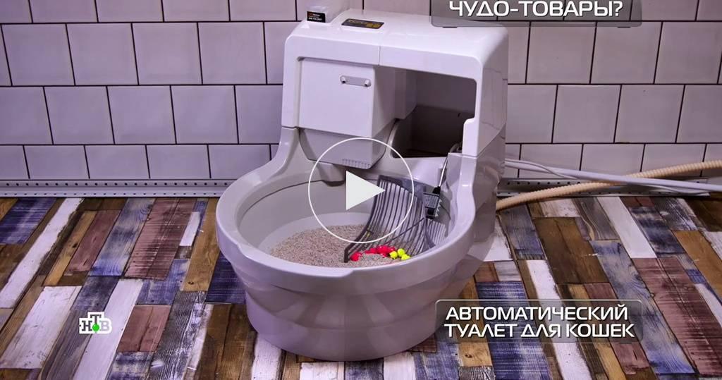 Автоматические туалеты для кошек: особенности, выбор и рейтинг моделей