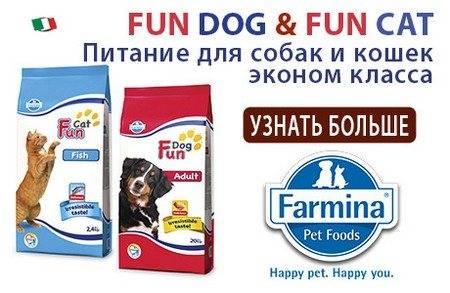 Корм фармина (farmina) для кошек   состав, цена, отзывы