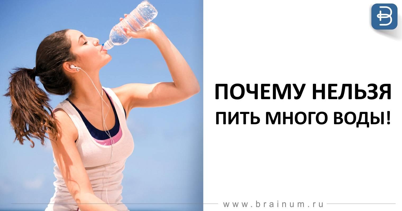 Почему кот или кошка пьет много воды