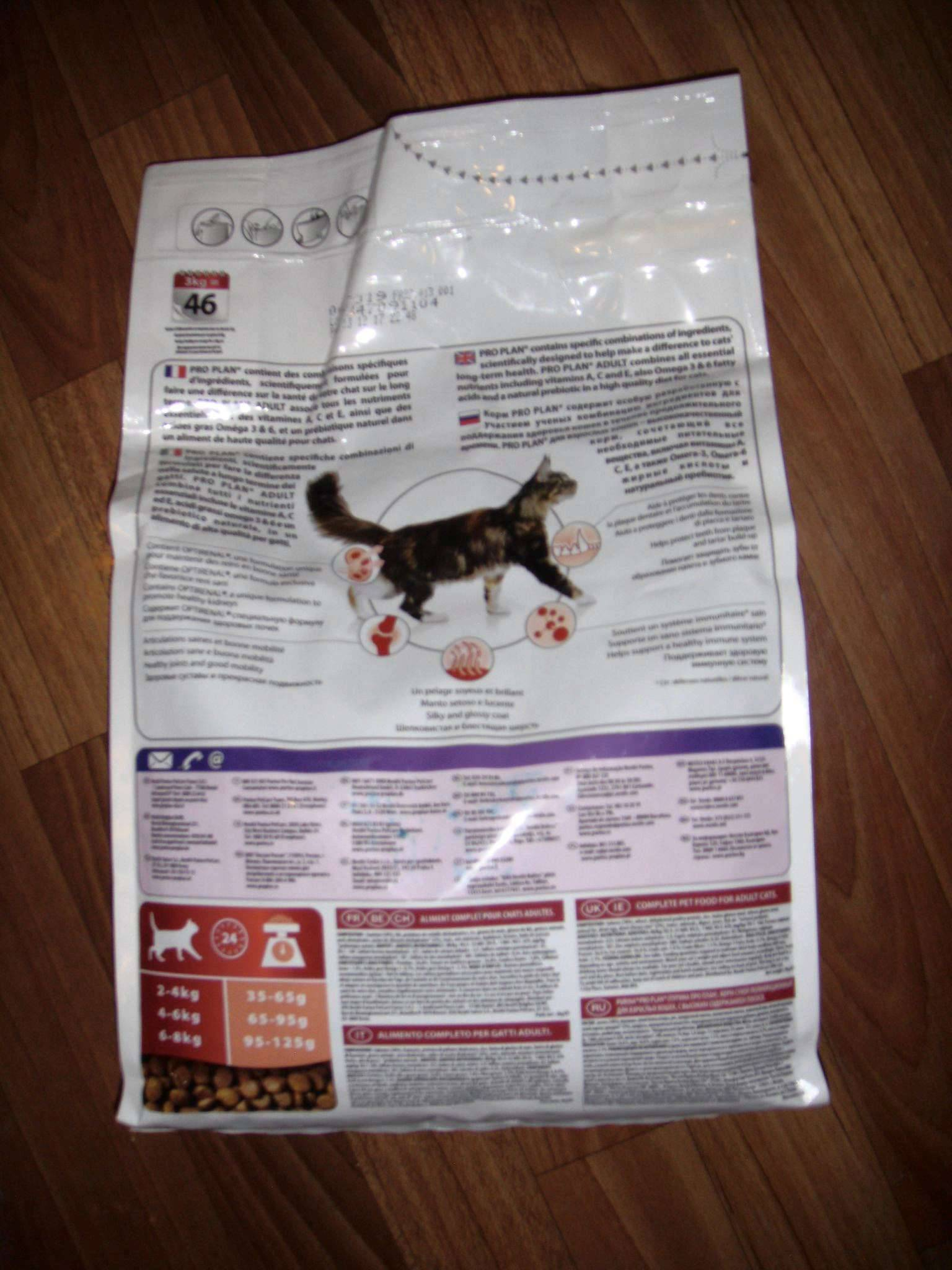 Всё о кормах для кошек класса холистик