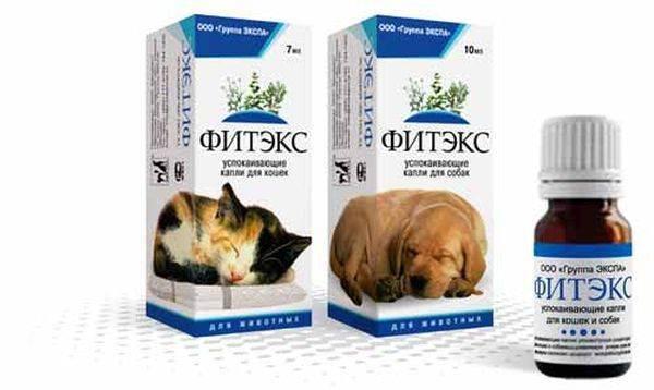 Успокоительное для кошек: выбираем лучшее!