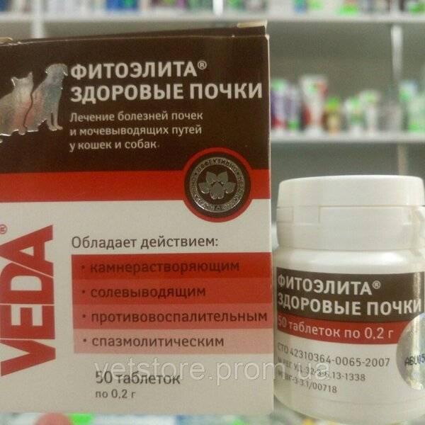 """Препарат """"фитоэлита здоровые почки"""" для кошек: инструкция по применению, состав и отзывы"""