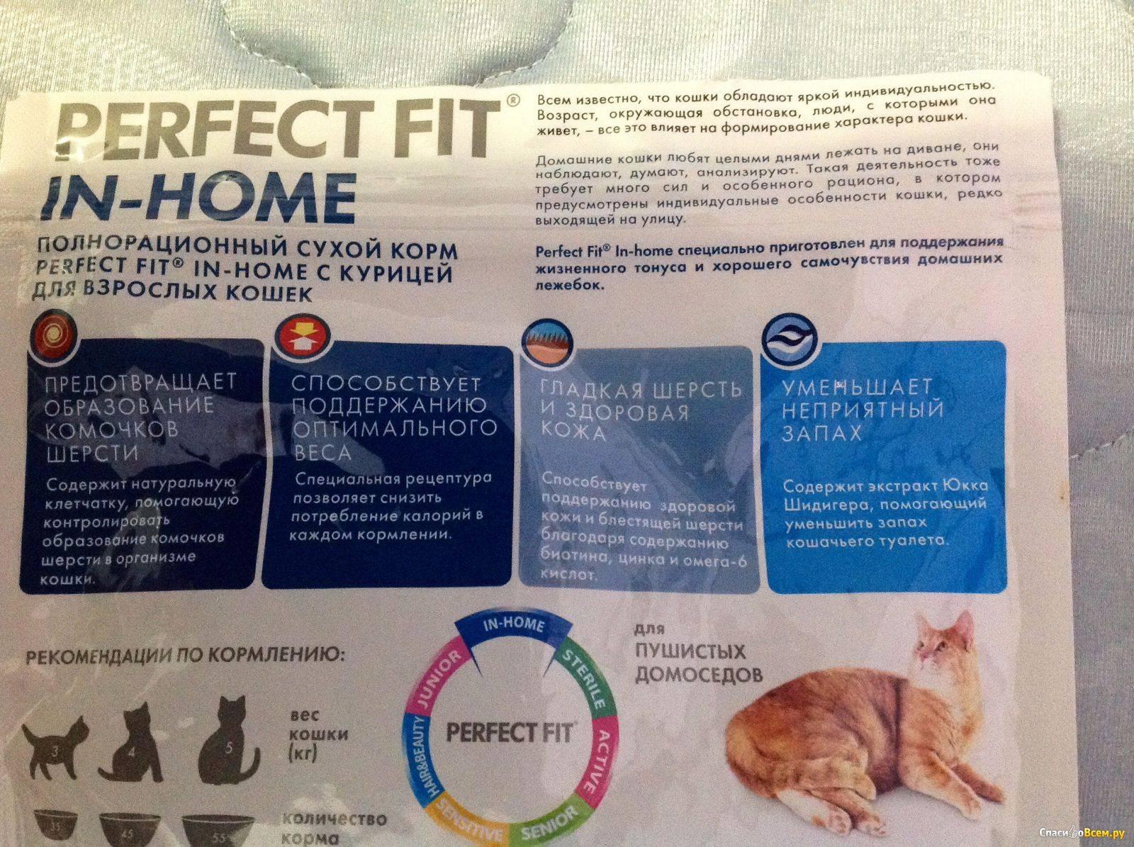 Обзор готовых кормов марки ландор для стерилизованных кошек после операции