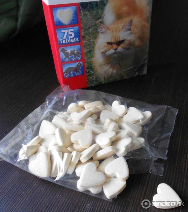 Таурин для кошек, вред и польза: что это такое, в каких продуктах и витаминах содержится?
