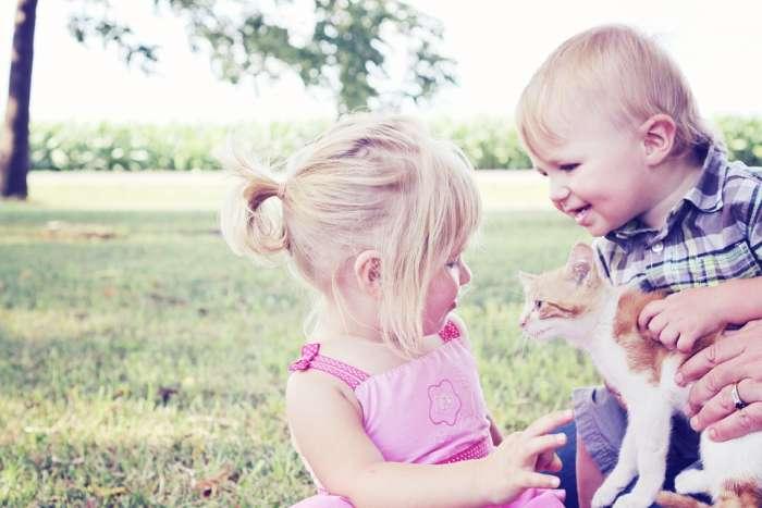 Целительное влияние животных на ментальное здоровье человека