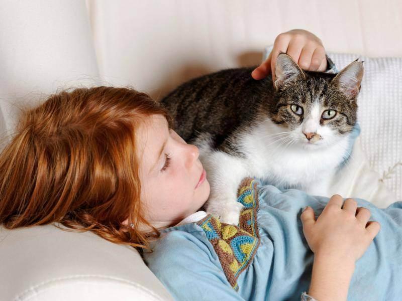 Почему людям нужны кошки? кошки на самом деле лечат людей
