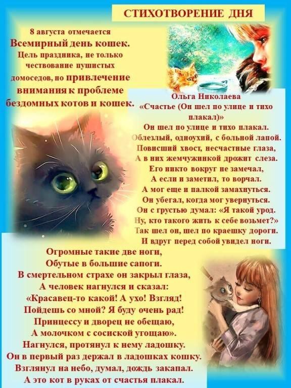 День кошки в россии в 2021 году: какого числа, дата и история праздника