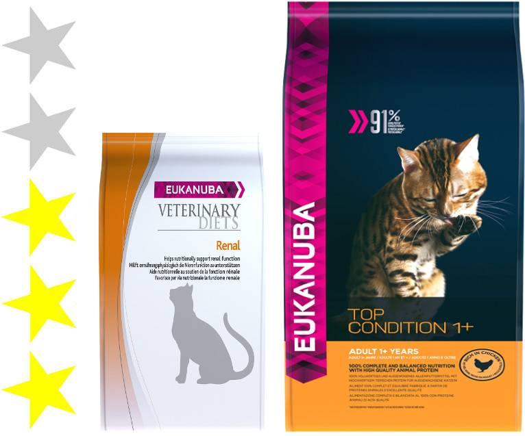 Eukanuba: корм для кошек высочайшего качества