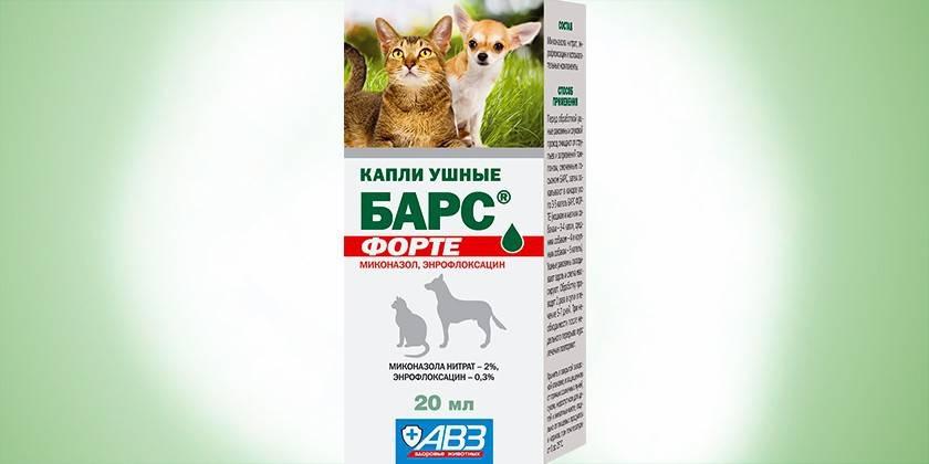 Капли для кошек от ушного клеща: обзор средств и правила применения
