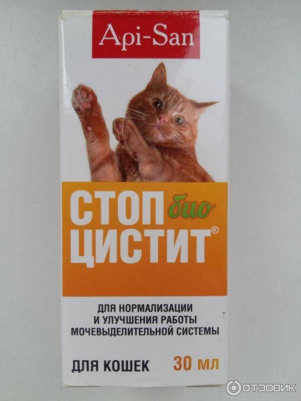 Стоп цистит для кошек описание