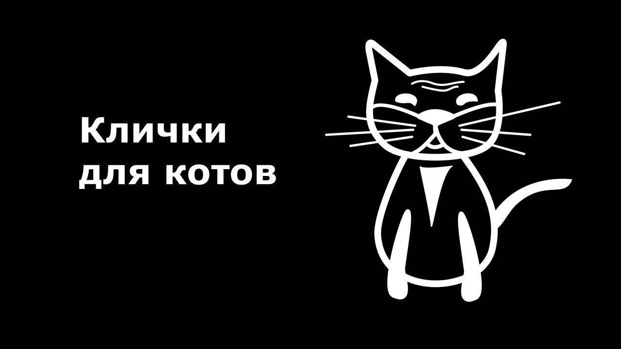 Простые клички для котов и кошек