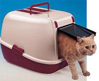 Как выбрать и пользоваться лотком с решеткой для кошек?