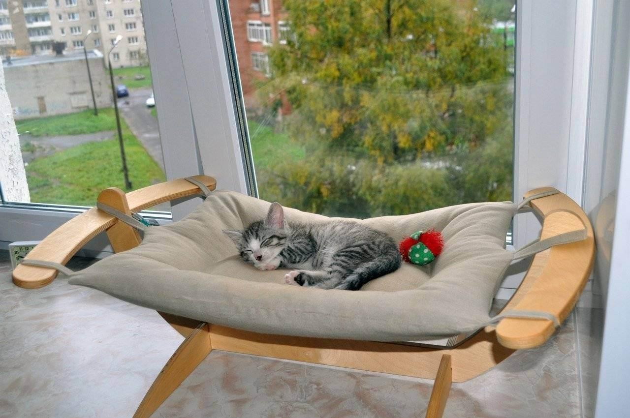 Как сделать лежанку для кошки своими руками: особенности кошачьего лежака, выкройка и изготовление