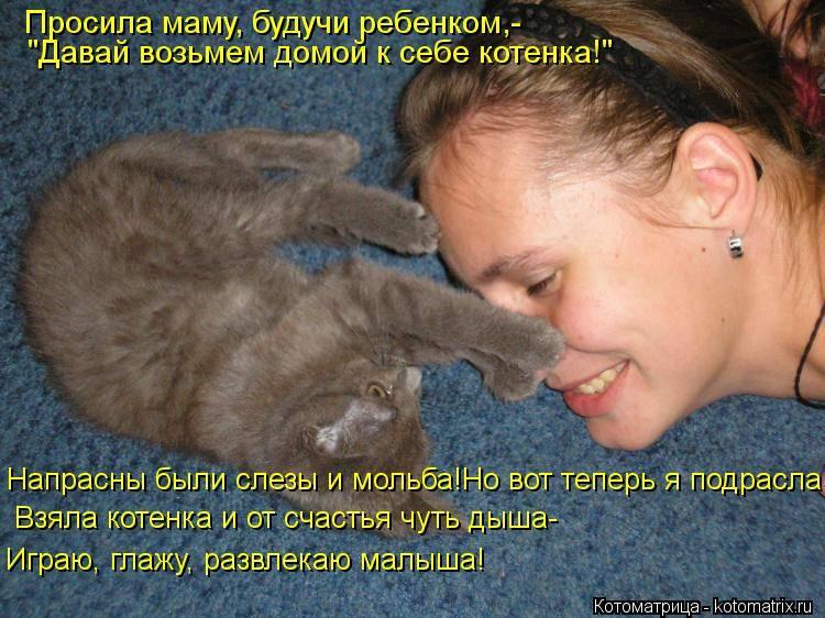 Котенок мяукает постоянно без причины: почему малыш все время кричит, что делать?