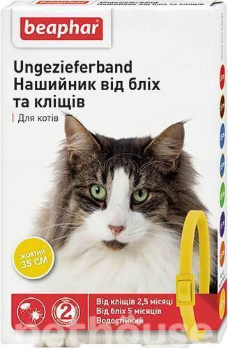 Как защитить кошку от укусов клещей