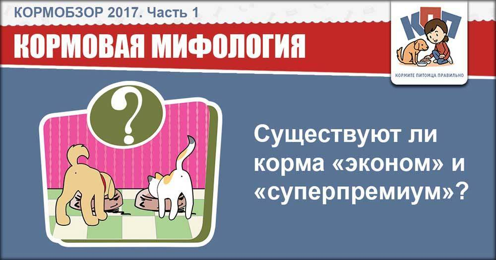 Сравнение сухих кормов для собак: как сравнить по составу? плюсы и минусы каждого из кормов