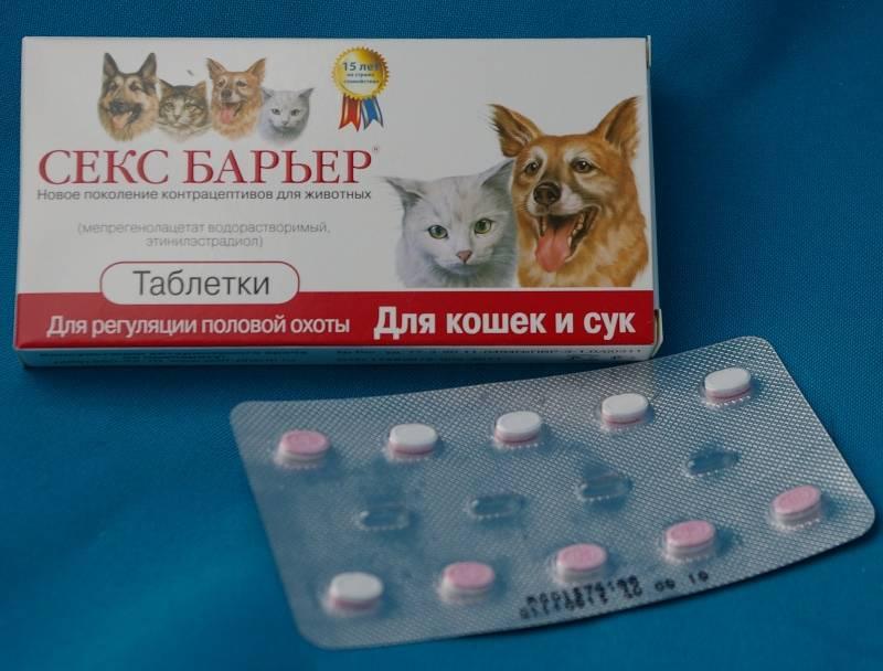 Капли для кошек от гуляния: обзор средств и стоит ли их использовать