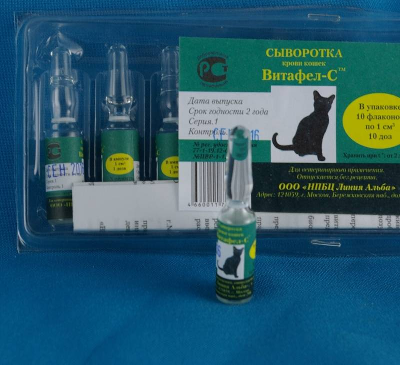 Глобфел-4 препарат для иммунизации кошек, инструкция, показания