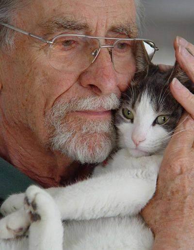 Польза кошки для человека