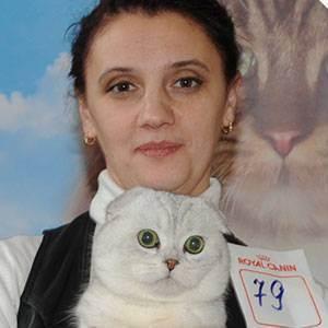 Как понять, что кошка рожает и сколько котят она принесет?