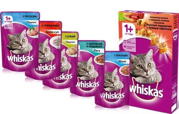 Описание и состав корма «вискас» для котят и взрослых кошек