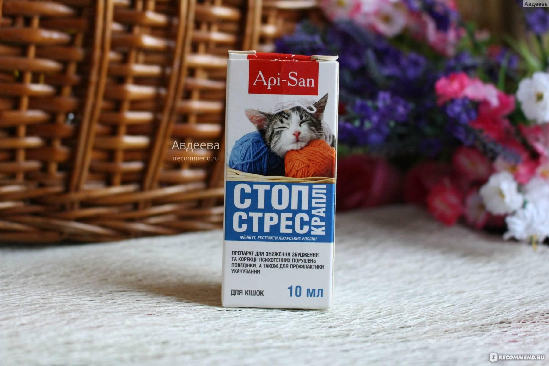 Стоп-стресс для кошек: инструкция по применению