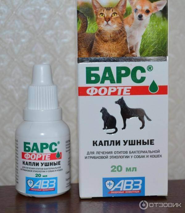 Ушные капли для кошек «барс»: описание. инструкция к применению