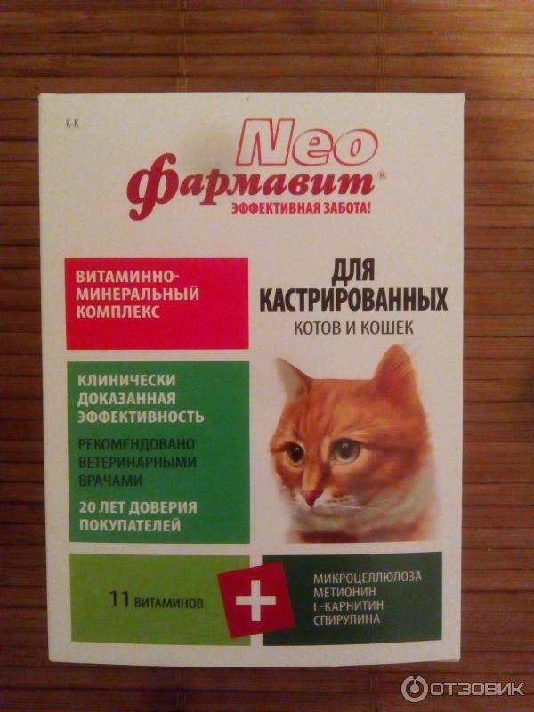 Лучшие витамины для кошек и котов - какой фирмы выбрать