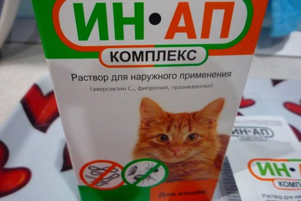 Лечение домашних животных препаратом ин ап