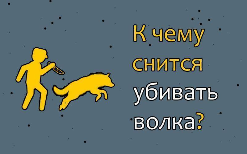 Сонник нападение кошек. к чему снится нападение кошек видеть во сне - сонник дома солнца