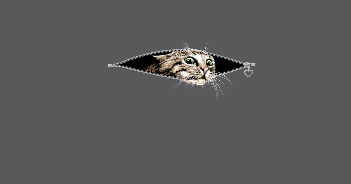 Ветеринарная клиника «кит» → как успокоить кошку?