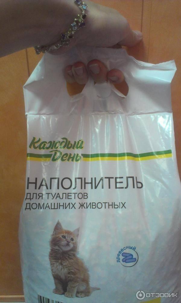 Котенок ест наполнитель для лотка