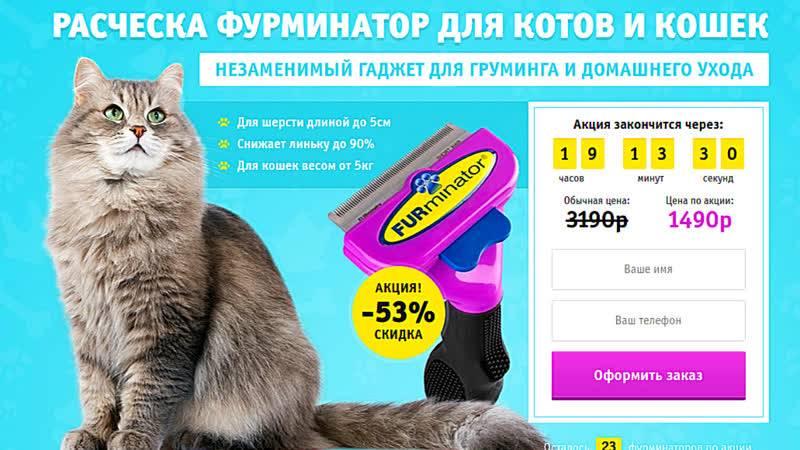 Фурминатор для кошек: что это такое и как им пользоваться