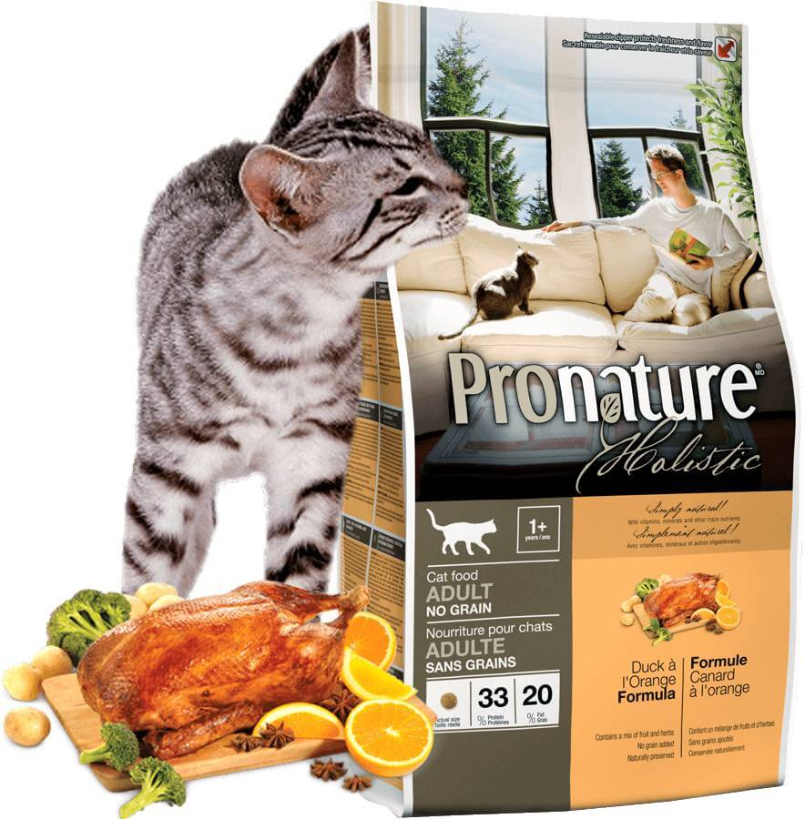 Корм холистик для кошек: что это такое, рейтинг лучших