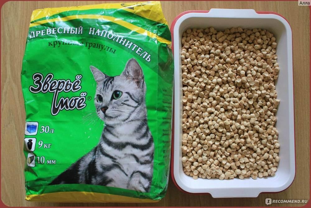 Наполнитель для туалета для кошек и котов: какой лучше | отзывы, для котят