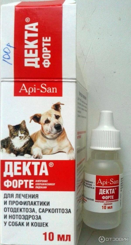 Ушные капли для кошек: лечение отита и клещей, инструкция по применению, как выбрать