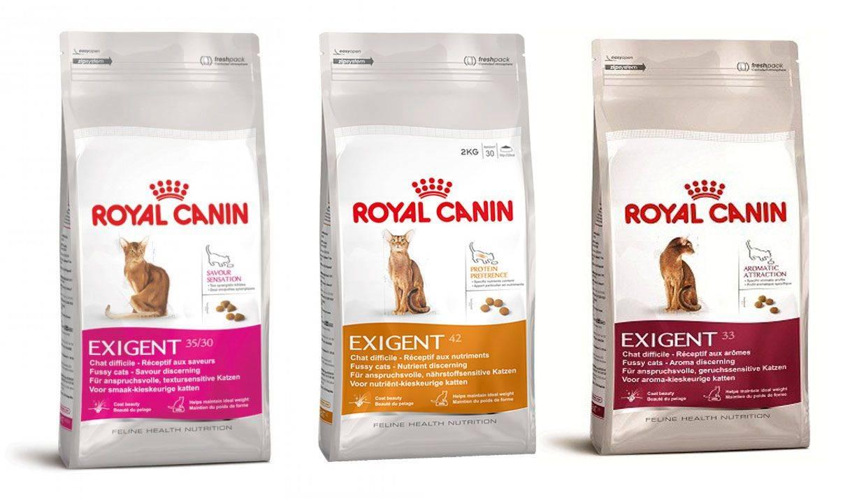Корм royal canin (роял канин) для стерилизованных кошек и кастрированных котов: виды, отзывы ветеринаров