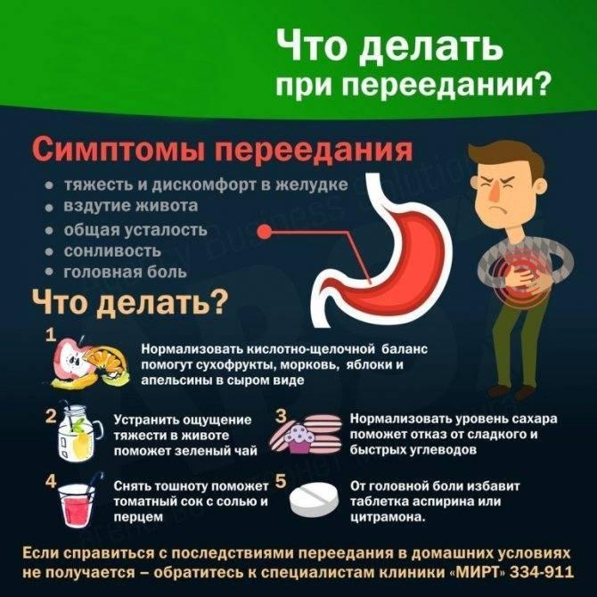 Отравление у кошек и котов: симптомы и лечение в домашних условиях