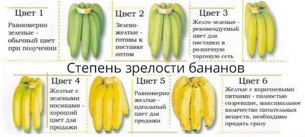 Какие бананы лучше — зеленые или желтые: польза и вред бананов, и какие выбрать