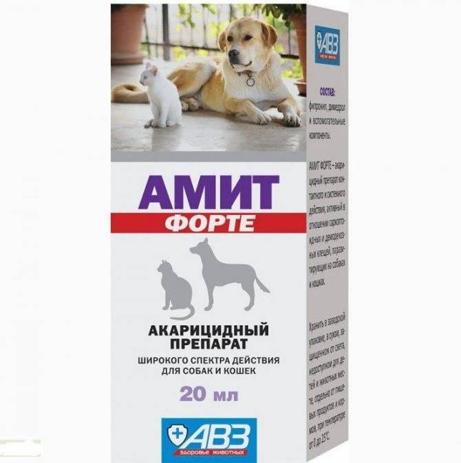 Инструкция по применению амоксисана у кошек. рассчитайте оптимальную дозу препарата. изучите широту антибактериального эффекта амоксисана у котов. улучшите эффективность терапии на 200%