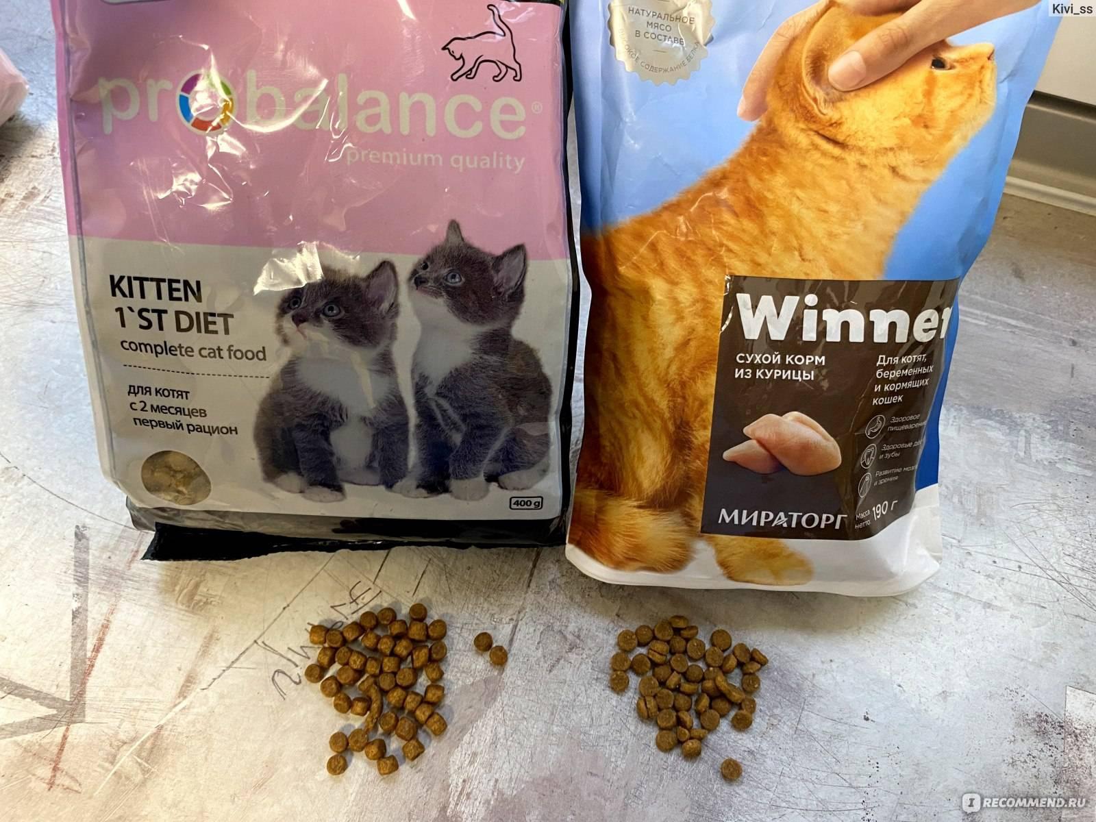 Корма для кошек, какой корм лучше для кошек, лидер рейтинга производителей, официальный сайт акана: производство и продажа корма для кошек, где купить, отзывы о корме акана