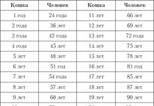 """Наталья суслова п-к """"tinarden"""": невыдуманная история золушки"""